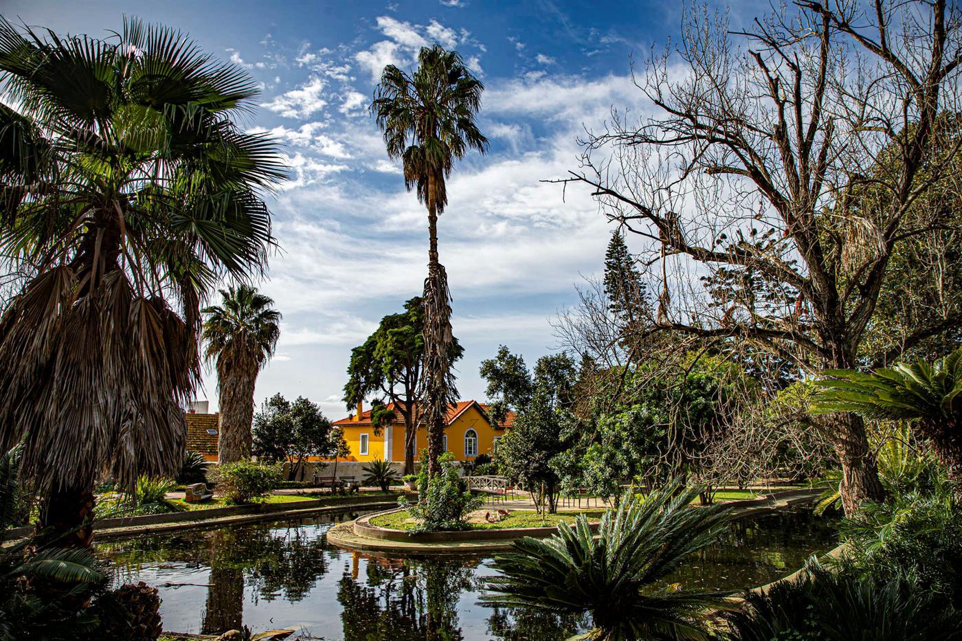 Jardim Botanico Tropical de Belém
