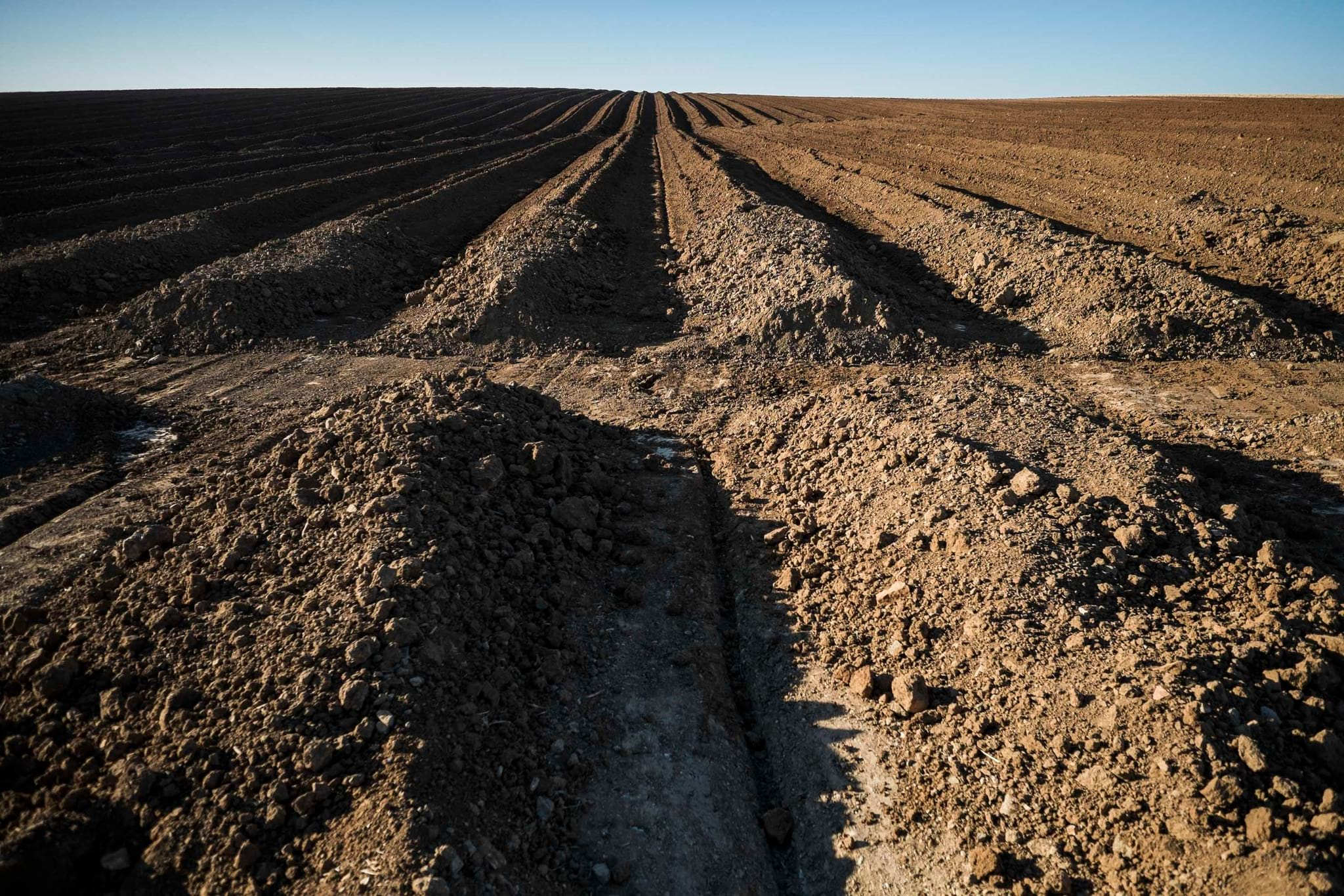 Governo Não Toma Medidas Urgentes Perante Destruição Arqueológica no Alentejo